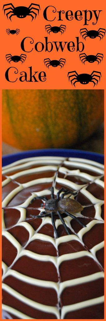 Halloween chocolate cobweb cake topped with a spooky cobweb and a scary spider for Halloween!