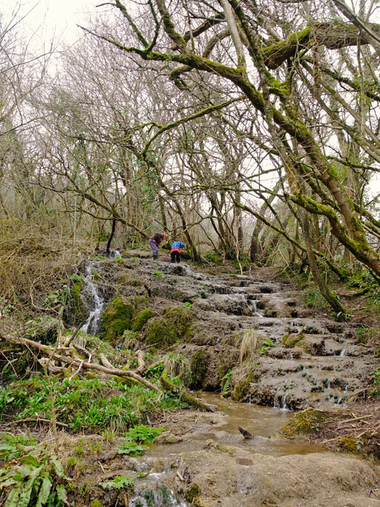 Two young boys wading up a muddy waterfall amongst the trees.