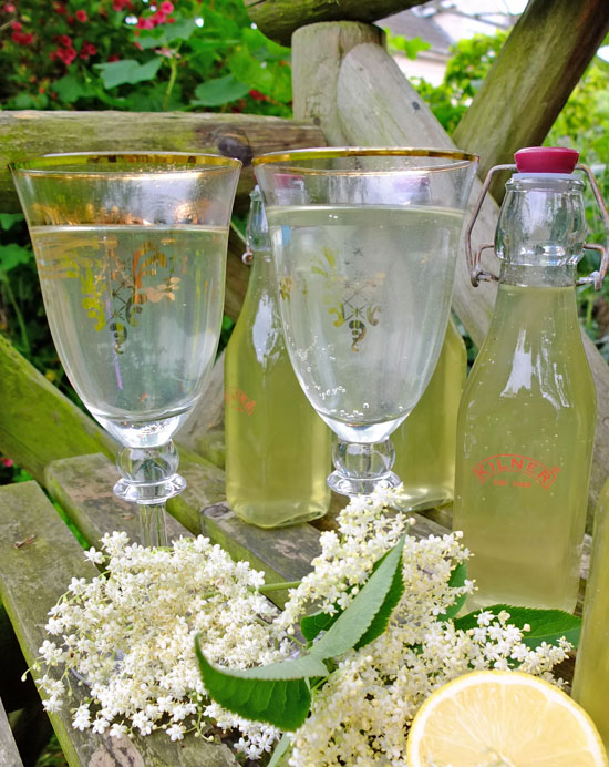 Elderflower cordial on a bench with elderflower heads, lemon and elaborate goblets.