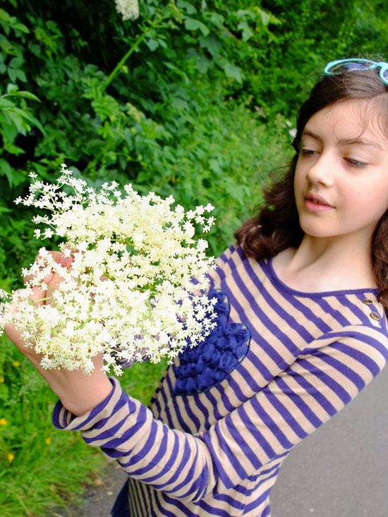 Foraging for Elderflower along the side of a path.