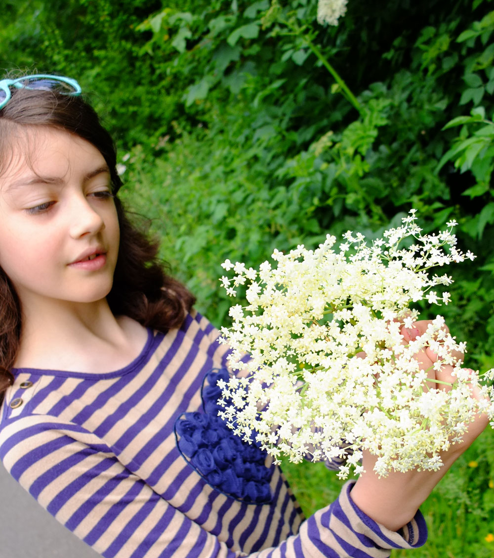 How to Make Elderflower Cordial – Foraging with my Daughter