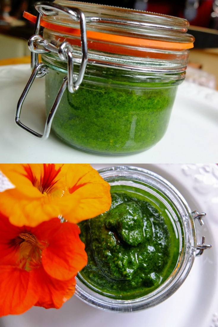 A jar of Nasturtium Leaf Pesto, along with nasturtium flowers.
