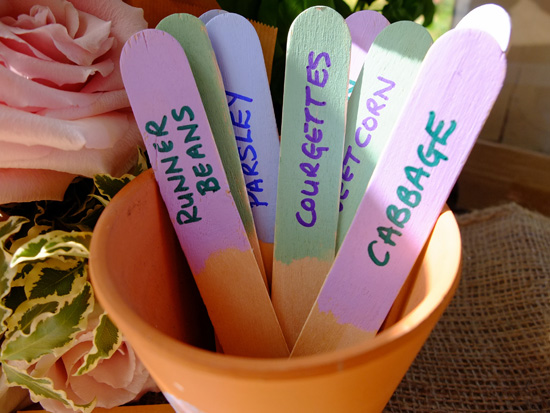 Homemade plant labels in a plant pot.