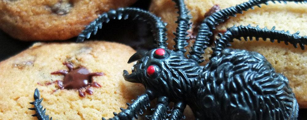Spider Biscuits – Spooky Halloween Baking!