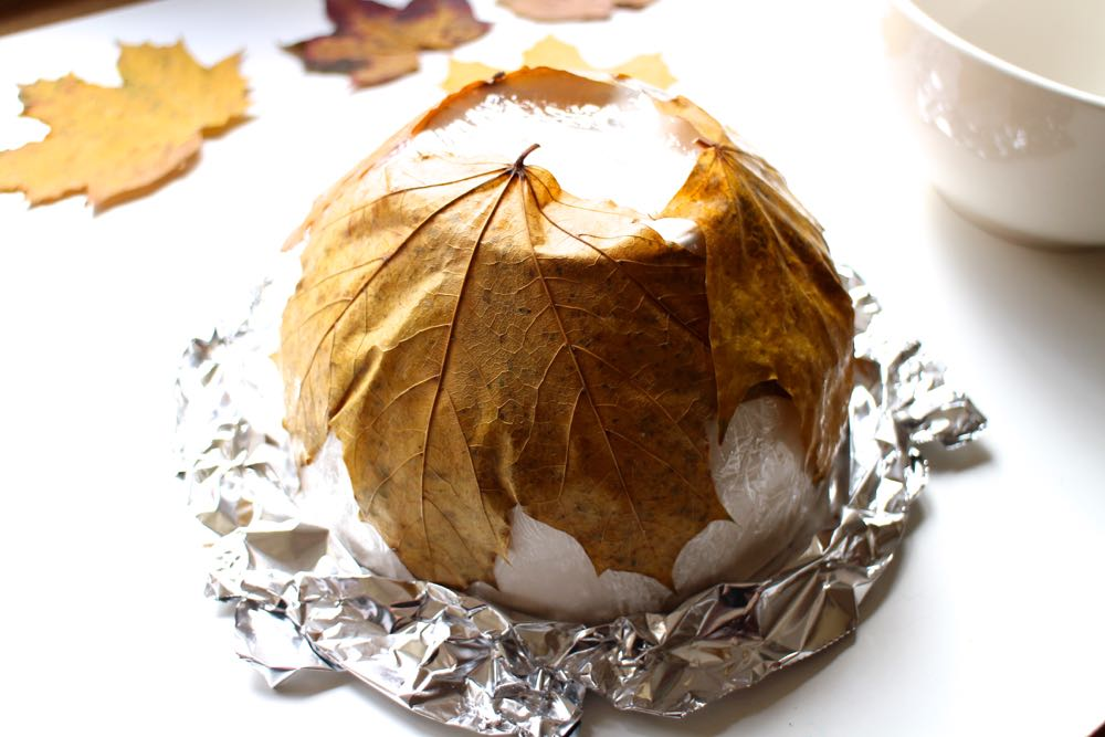 Leaf bowl in progress, showing leaves being glued to cling film.