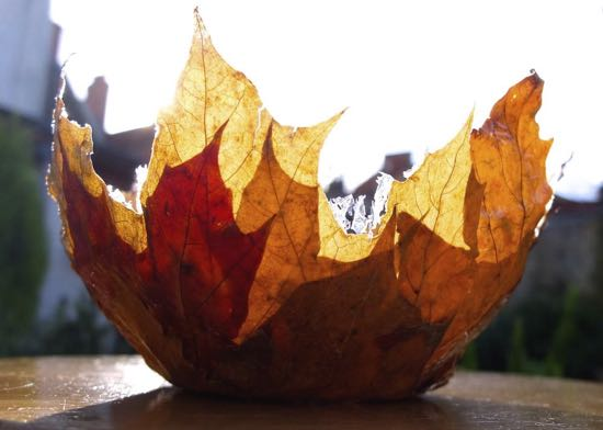 A bowl made from leaves.