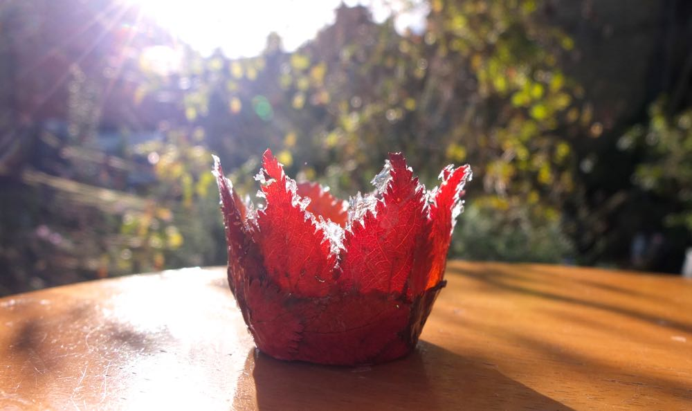 A smaller Autum leaf bowl in the sunshine.