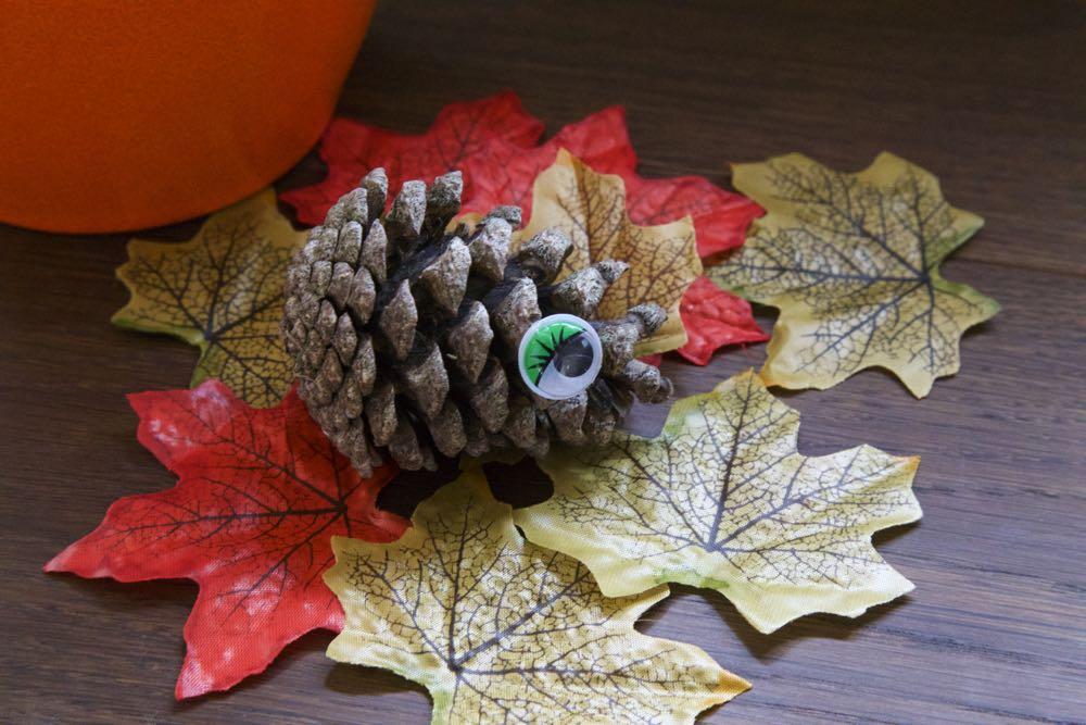 Pine cone hedgehog with a googly eye.