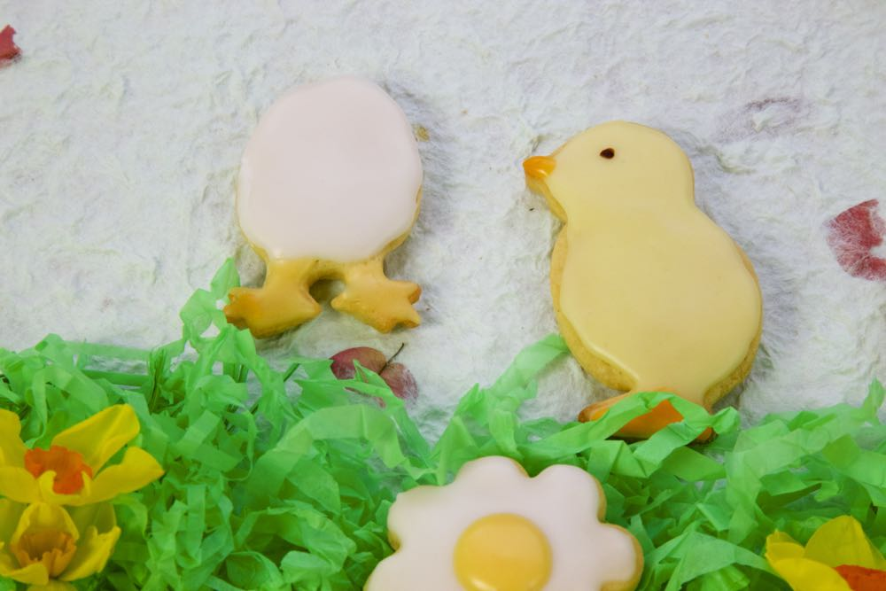 Iced biscuits of an Easter Chick and Egg Hatching.