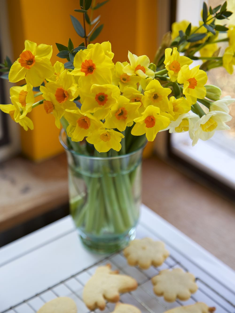A jar of daffodils over the biscuits cooling on a wire rack.