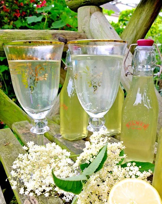 Homemade Elderflower Cordial in decorated goblets.