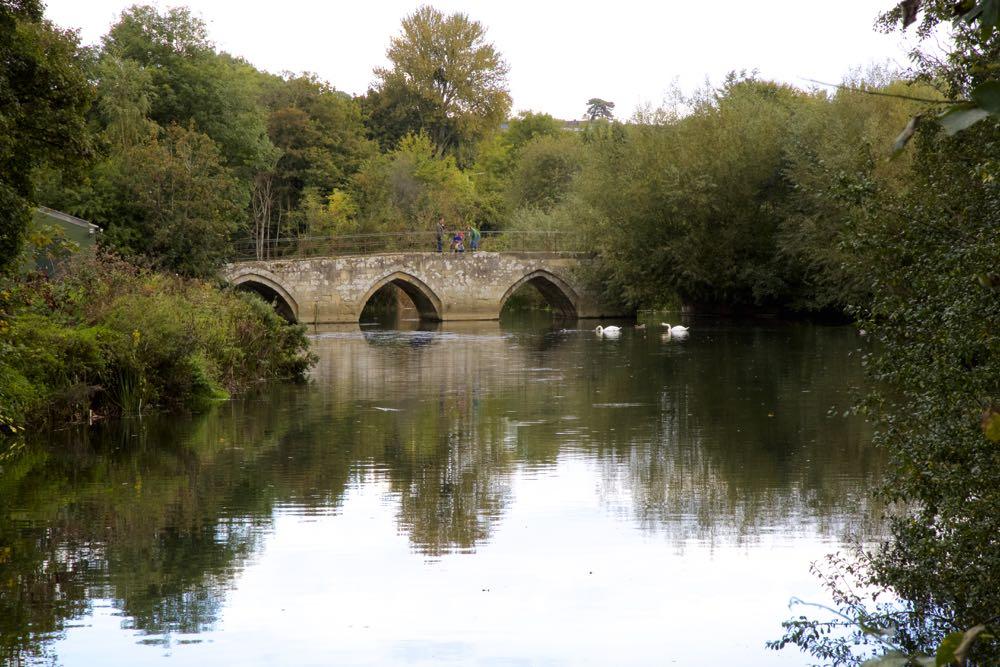 Bradford on Avon Bridge with swans.