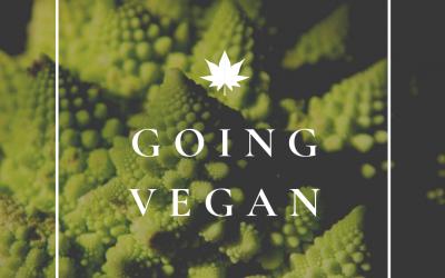 Easy Tips For A Beginner Vegan