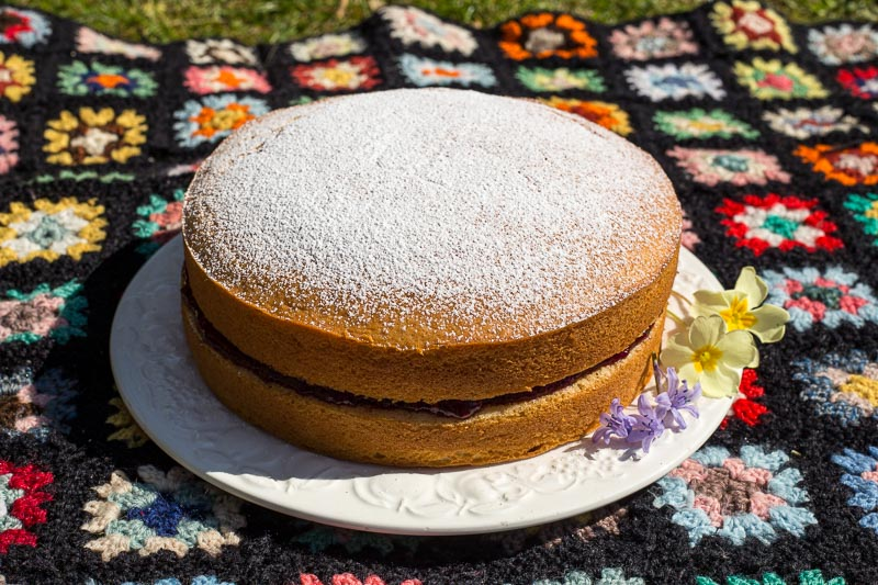 Dairy Free Sponge Cake filled with raspberry jam and sprinkled with icing sugar.